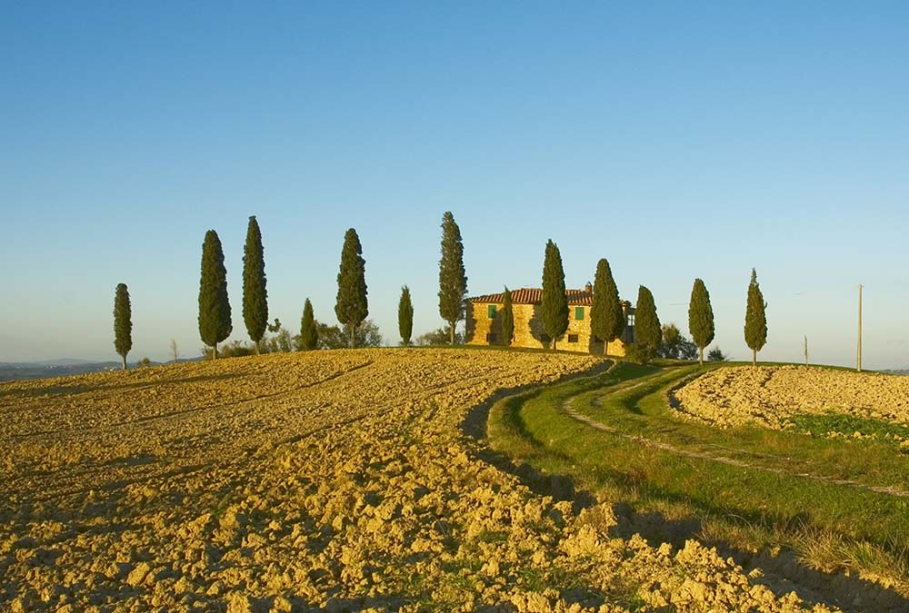 Chianti in one day - Excursions from Florence